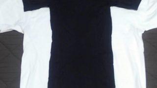 金剛筋シャツを8日間着ています。効果のほどは?感じたことをまとめてみました。