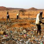 日本人が「サハラ砂漠」にゴミを撒く。それが砂漠緑化に繋がるって、どんな仕組み?