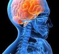 納得する答えが出てこないのは、脳と身体の仕組みが原因だった!?