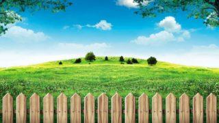 【理想の生活を目指して】隣の芝生は青く見える。